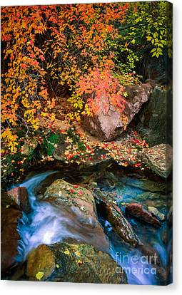 North Creek Fall Foliage Canvas Print by Inge Johnsson