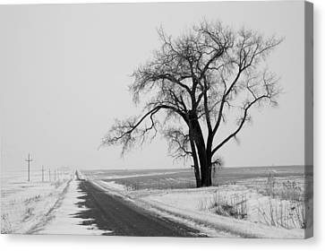 North Dakota Scenic Highway Canvas Print by Bob Mintie