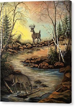 North Shore Hidden Creek Canvas Print by Kimberly Benedict