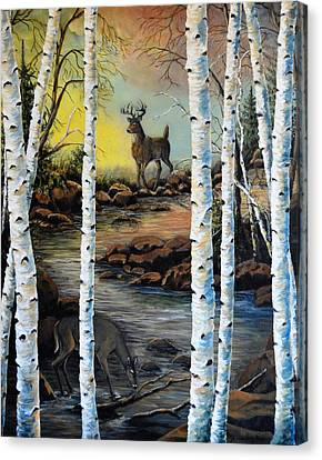 North Shore Hidden Creek Two Canvas Print by Kimberly Benedict
