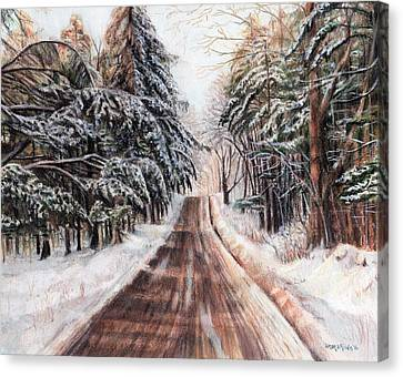Northeast Winter Canvas Print by Shana Rowe Jackson