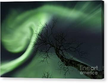 Northern Lights In The Arctic Canvas Print by Arild Heitmann