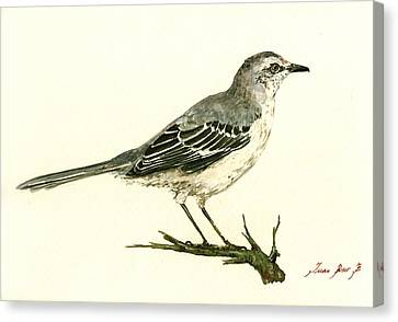Northern Mockingbird Canvas Print by Juan  Bosco