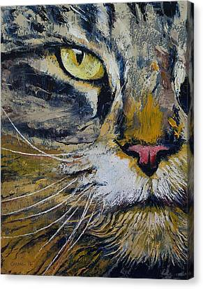 Norwegian Forest Cat Canvas Print by Michael Creese