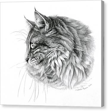 Norwegian Forest Cat Canvas Print by Svetlana Ledneva-Schukina