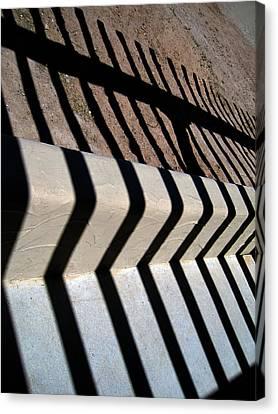 Not A Zebra Canvas Print by Susanne Van Hulst