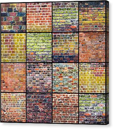 Not Just A Brick In The Wall Canvas Print by Tim Gainey