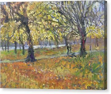 November In Hyde Park Canvas Print by Patricia Espir