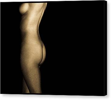 Nude On Black Canvas Print by Bob Orsillo