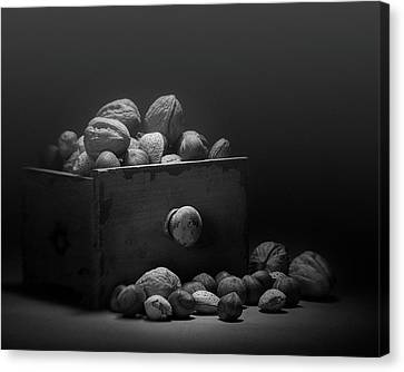 Nuts In Black And White Canvas Print by Tom Mc Nemar
