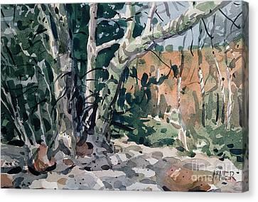 Oak Creek Canyon Canvas Print by Donald Maier