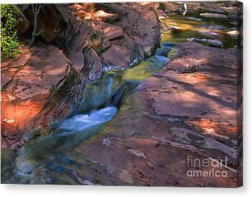 Oak Creek Canyon Splendor Canvas Print by Sandra Bronstein