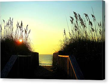 Ocean View 6 8/02 Canvas Print by Mark Lemmon