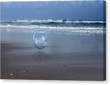 Oceanic Sphere  Canvas Print by Betsy Knapp