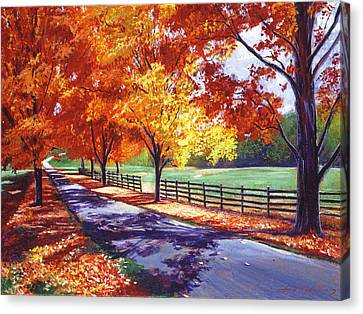 October Road Canvas Print by David Lloyd Glover