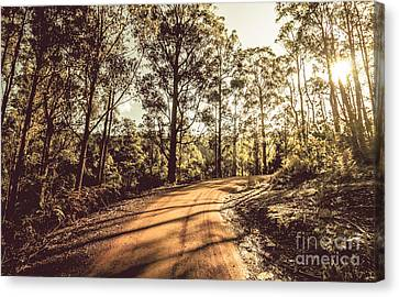 Off Road Trails Canvas Print by Jorgo Photography - Wall Art Gallery