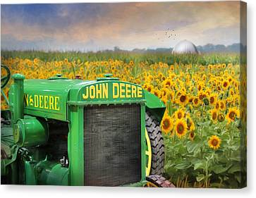 Oh Deere Canvas Print by Lori Deiter