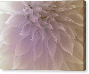 Oh Precious Day Canvas Print by The Art Of Marilyn Ridoutt-Greene