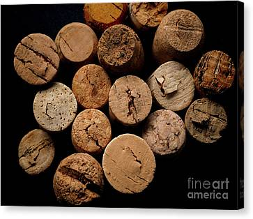 Old Bottle Cork, View From Above Canvas Print by Andreas Berheide