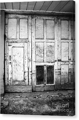 Old Doors Canvas Print by Reb Frost