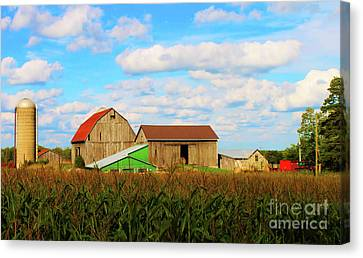 Old Family Farm Canvas Print by Anthony Djordjevic