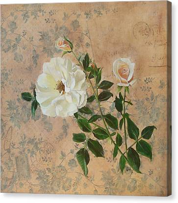 Old Fashioned Rose Canvas Print by Carrie Jackson