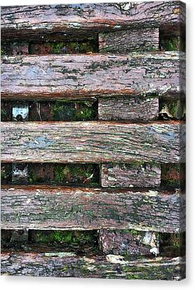 Old Grungy Wood Planks Canvas Print by Tom Gowanlock