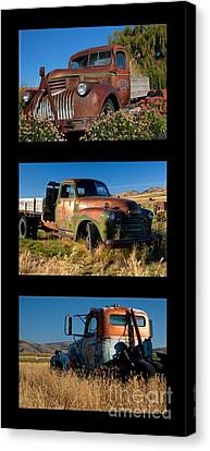 Old Guys Trio 4 Canvas Print by Idaho Scenic Images Linda Lantzy