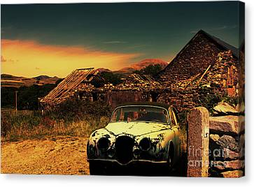 Old Jag Out To Pasture  Canvas Print by Chris Evans