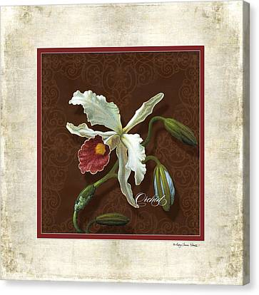 Old Masters Reimagined - Cattleya Orchid Canvas Print by Audrey Jeanne Roberts