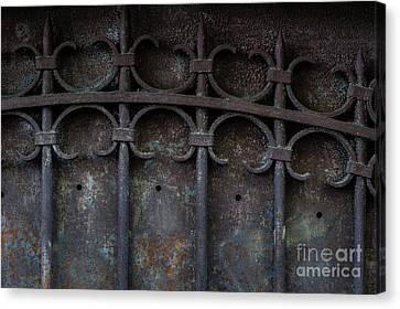 Old Metal Gate Canvas Print by Elena Elisseeva