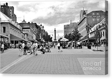 Old Montreal Jacques Cartier Square Canvas Print by Reb Frost