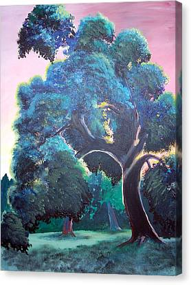 Old Oak Canvas Print by Jenn Cunningham