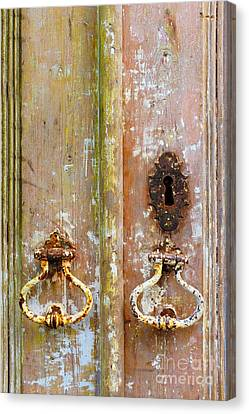 Old Peeling Door Canvas Print by Carlos Caetano