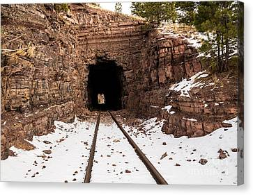 Old Railroad Tunnel Canvas Print by Sue Smith