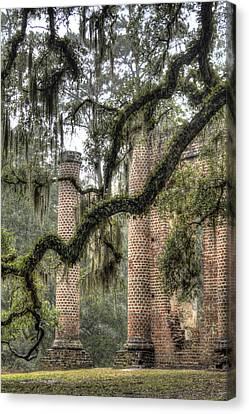 Old Sheldon Church Ruins Canvas Print by Dustin K Ryan