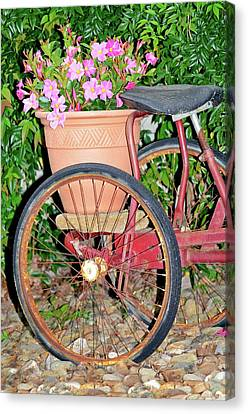 Old Tricycle Canvas Print by Susan Leggett