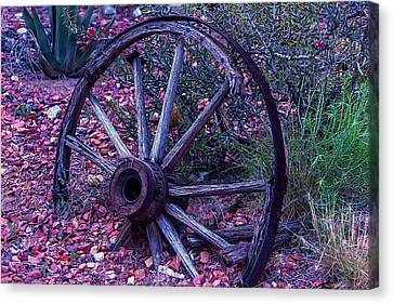 Old Wagon Wheel With Lizard Canvas Print by Garry Gay