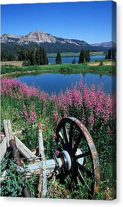 Old Wheel And Brooks Lake Canvas Print by Kathy Yates