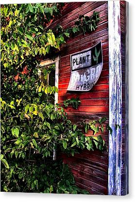 Old Williams Indiana Feed Mill Detail Canvas Print by Julie Dant