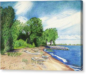 Old Woman Creek - Huron Ohio Canvas Print by Shawna Rowe