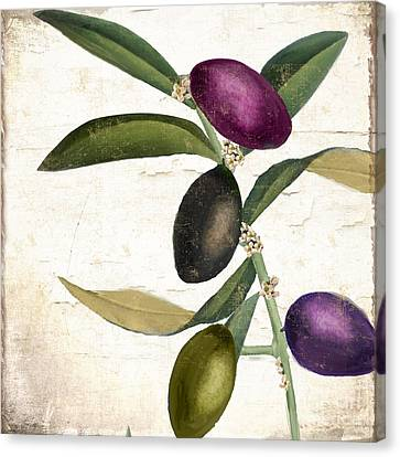 Olive Branch Iv Canvas Print by Mindy Sommers