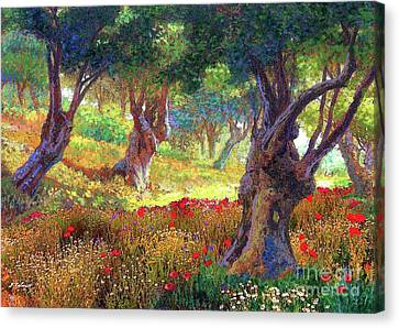 Olive Trees And Poppies, Tranquil Grove Canvas Print by Jane Small