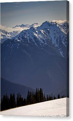 Olympic National Park Canvas Print by Albert Seger