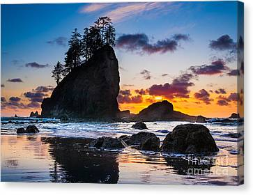 Olympic Sunset Canvas Print by Inge Johnsson