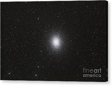 Omega Centauri Globular Star Cluster Canvas Print by Philip Hart