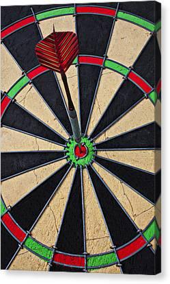 On Target Bullseye Canvas Print by Garry Gay