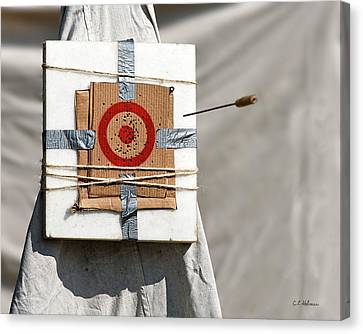 On Target Canvas Print by Christopher Holmes