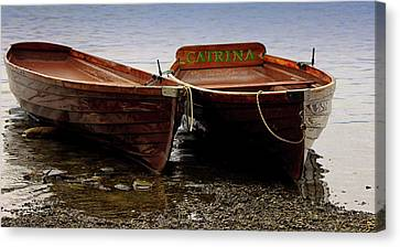 On The Lake Canvas Print by Martin Newman