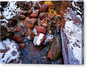 On The Rocks Canvas Print by Christopher Holmes